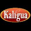 Kaligua